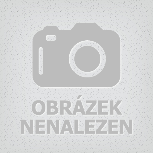 TEC2000 Radiator Stop Leak (utěsnění chladiče)